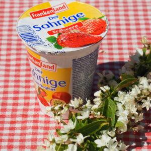 Smulyoghurt